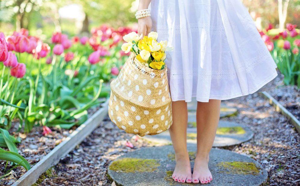 barefoot-basket-blooming-413707